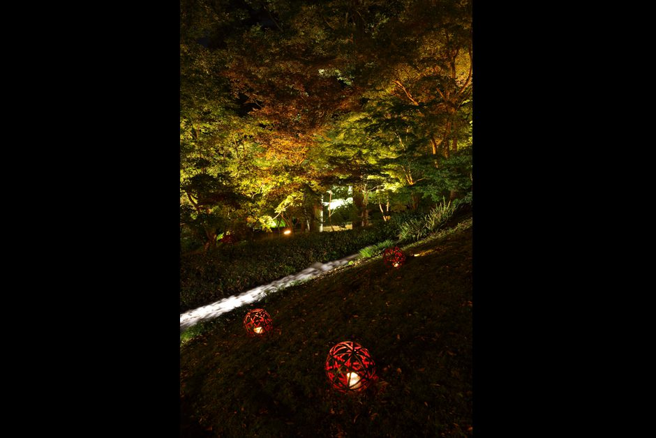 鶯啼庵 庭園ライトアップ